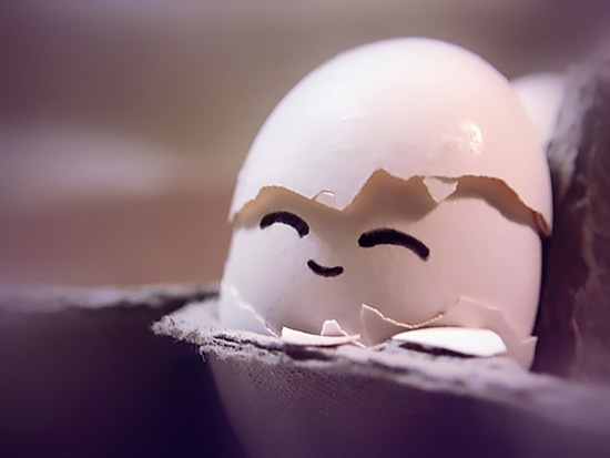 Creative Egg Photography 001