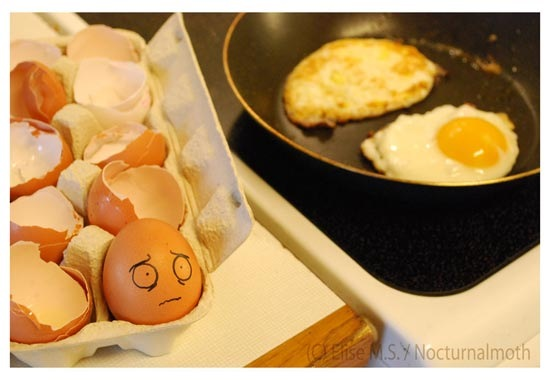 Creative Egg Photography 021