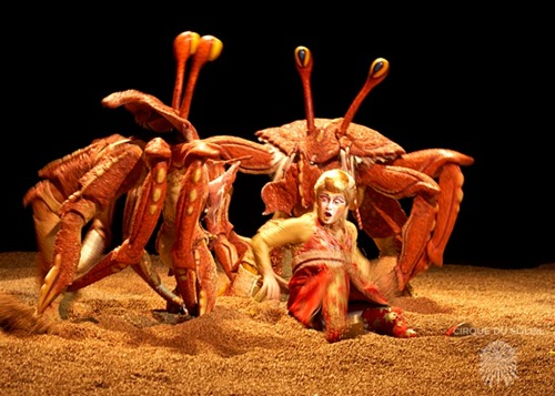img_gallery_crabs